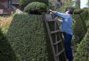 Har du råd til at gøre haven i stand?